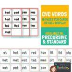 CVC Word Cards - Mrs Mactivity Font