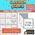 Pupil Voice Flap