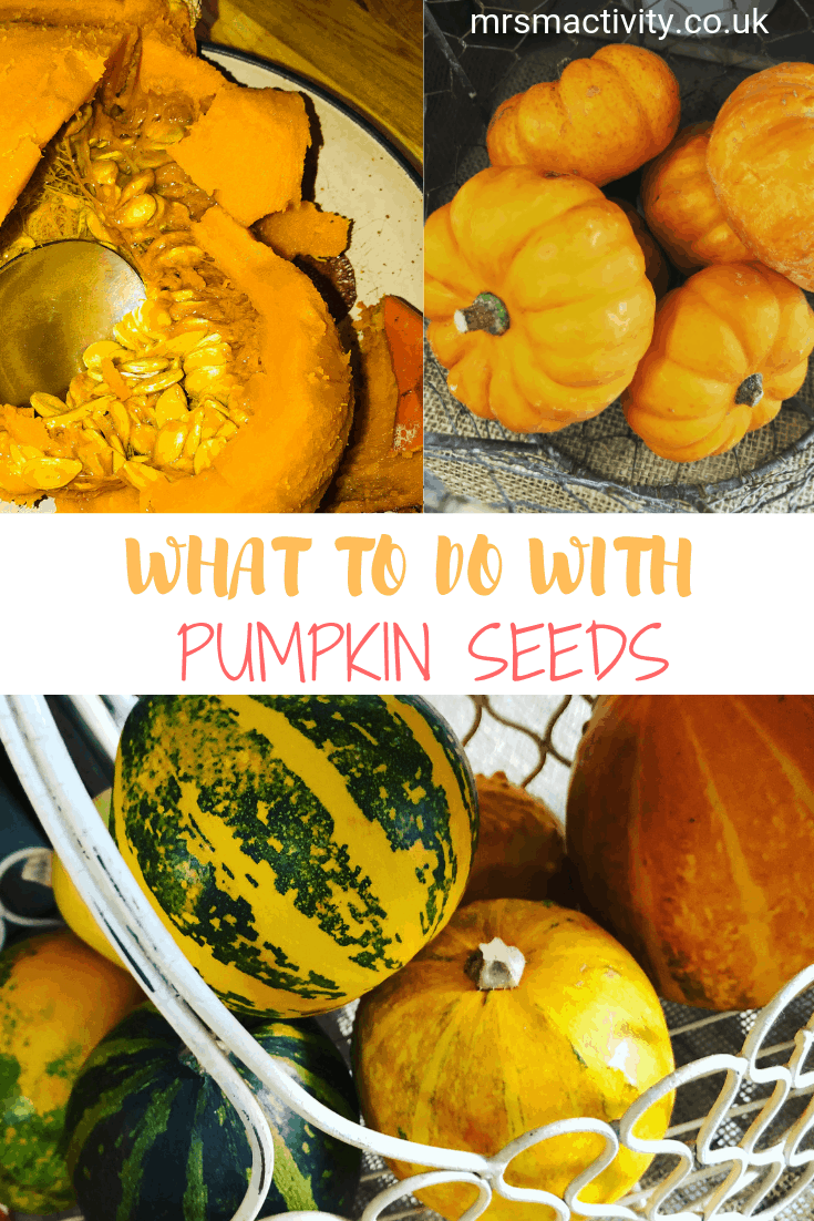 What to Do With Leftover Pumpkin Seeds?
