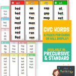 CVC word card word families