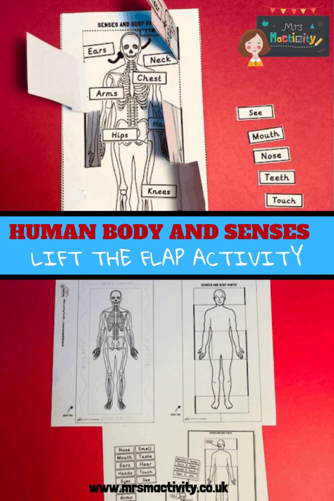 human body senses labelling activity
