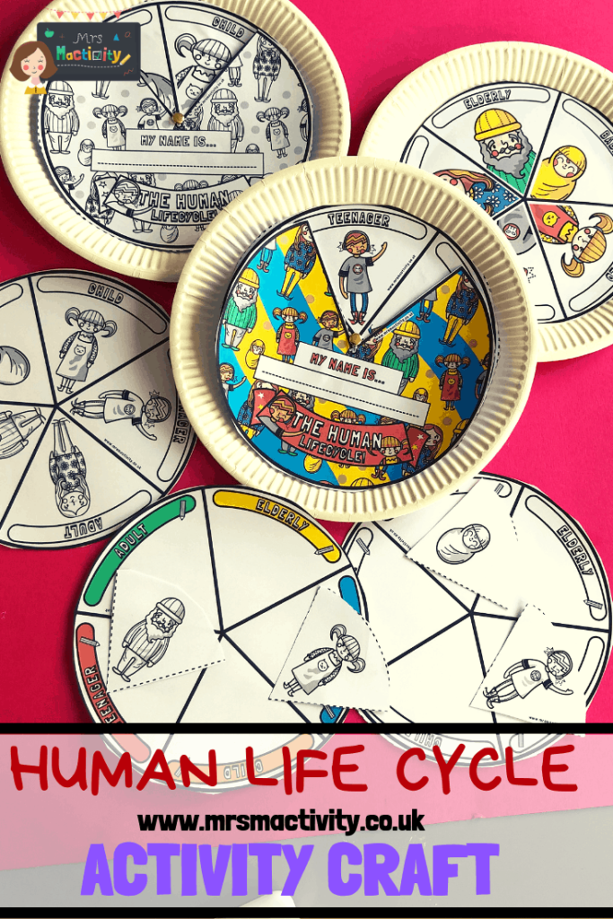 Human lifecycle activity craft