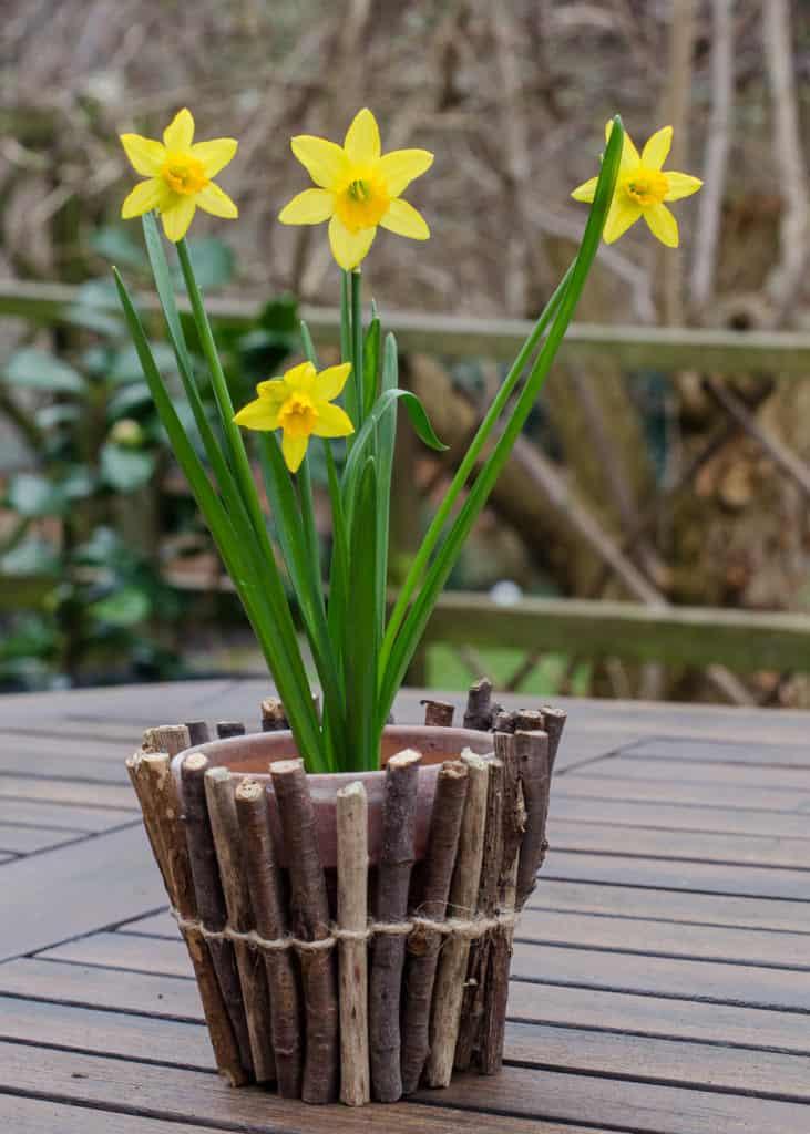 Make a twig wrapped flower pot