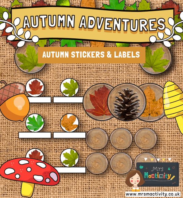 Autumn Display Accessories