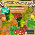 Autumn inspiration leaves