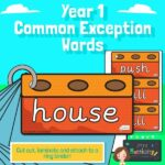 Year 1 Common Exception Words on House Bricks
