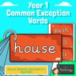 Year 1 Common Exception Words on Bricks