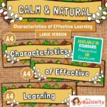 Characteristics of Effective Learning Display Banners - Large