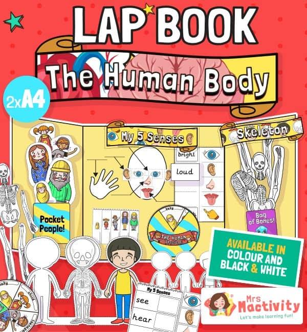 The human body lapbook