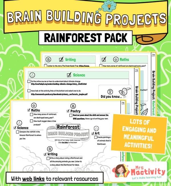Rainforest Brain Building Activities