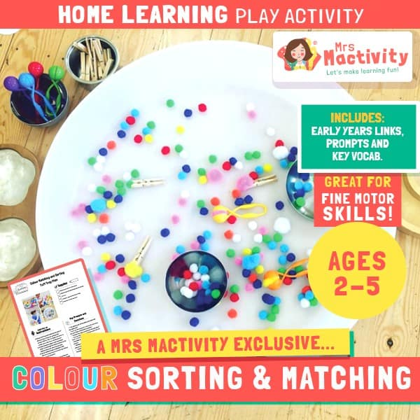 Aged 2-5 Home Learning Colour Sorting Play Activity