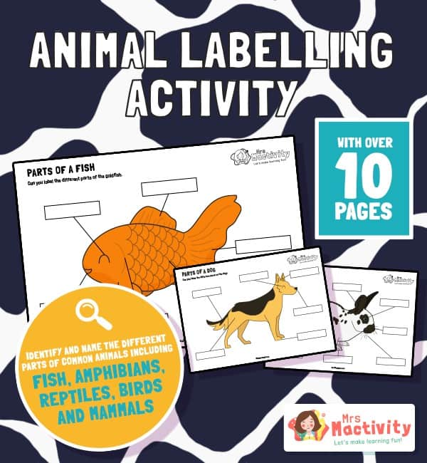 Differentiated Animal Labelling Activity