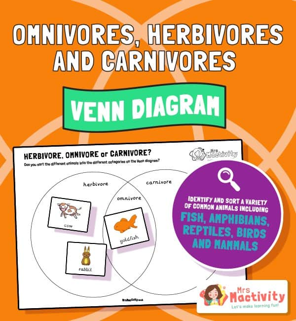identify and name a variety of common animals that are carnivores, herbivores and omnivores.