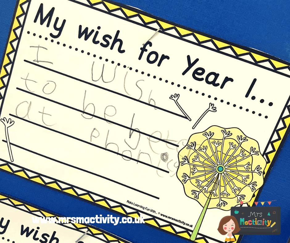 make a wish display pack