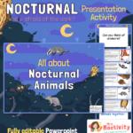 Nocturnal animals information powerpoint