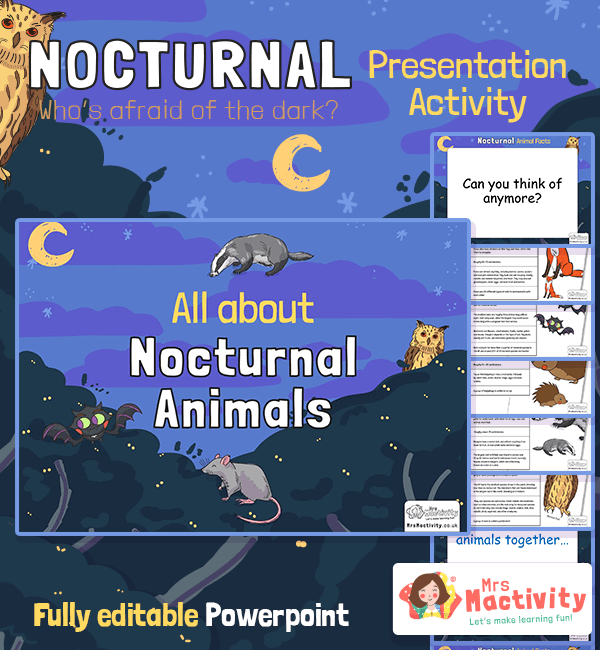 Nocturnal animals information powerpoint
