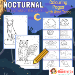 Nocturnal Animals Colouring Pages Word Trace