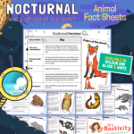 Nocturnal Animals Fact Files