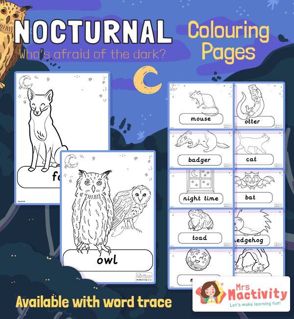 Nocturnal Animals Colouring Pages Mrs Mactivity