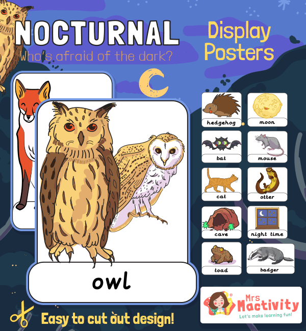 Nocturnal Animals Display Posters
