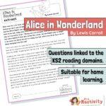 Year 5 Reading Comprehension - Alice in Wonderland