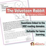 Year 4 Reading Comprehension - The Velveteen Rabbit