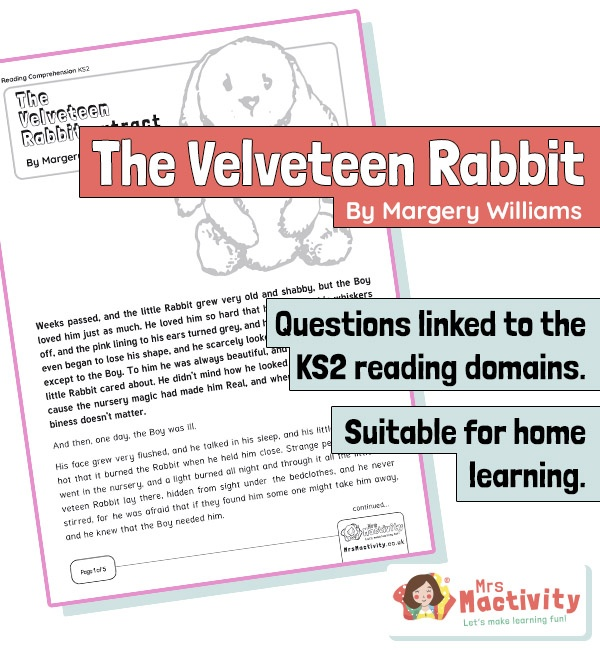Year 4 Reading Comprehension - The Velveteen Rabbit