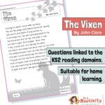 Year 6 Reading Comprehension - The Vixen