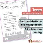 rc9 tree mb1 thumb1