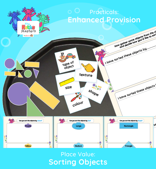 Year 1 | Sorting Objects Enhanced Provision | Practical Activity
