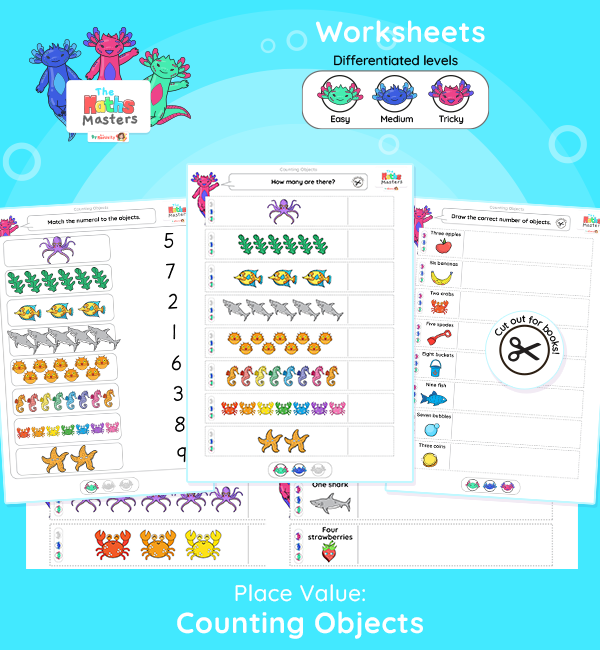 Year 1 | Counting Objects Differentiated Worksheets