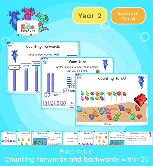 Year 2 | Counting to 20 Lesson Presentation